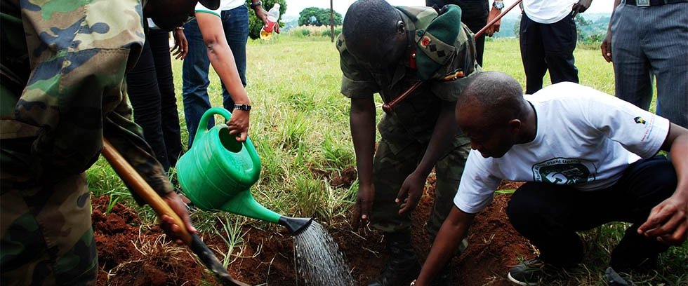 Plant a tree, save Uganda